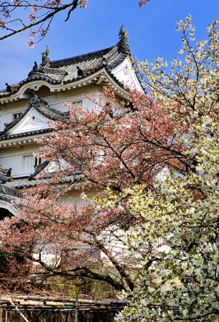 uwajima castle