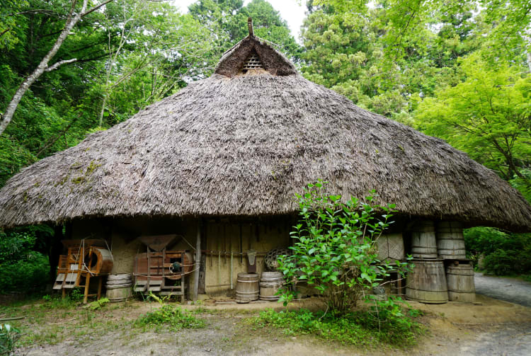 Koka Ninja Village