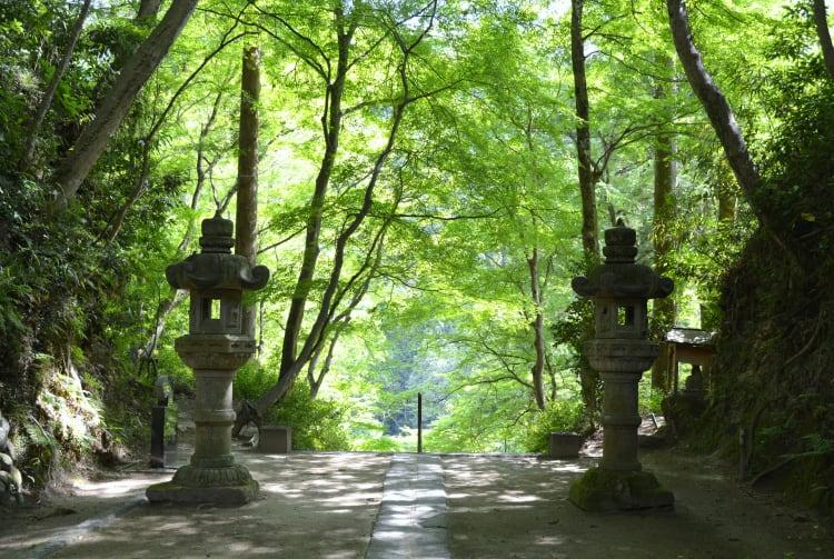 Kojakuji Temple