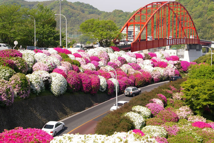 Ondo Bridge