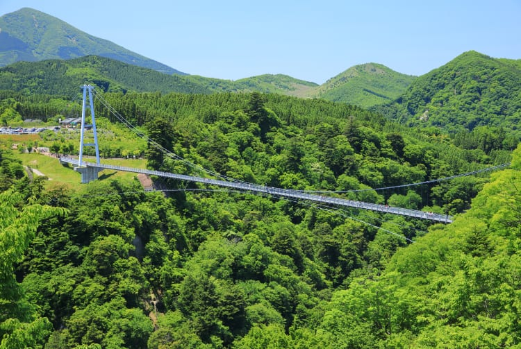 Kokonoe Yume Grand Suspension Bridge
