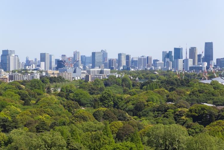 Shinjuku Gyoen Garden