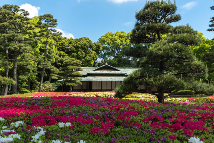 Kokyo Higashi Gyoen Garden -Imperial Palace East Garden