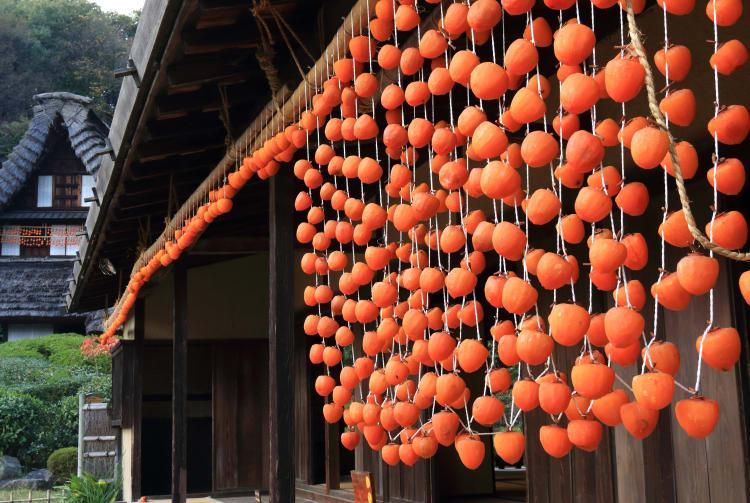 Japan Open-Air Folk House Museum