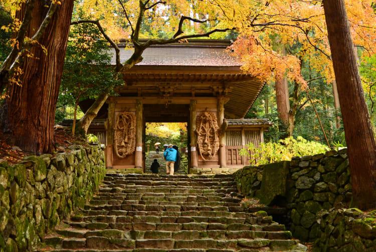 Fall Foliage of Hyakusai-ji