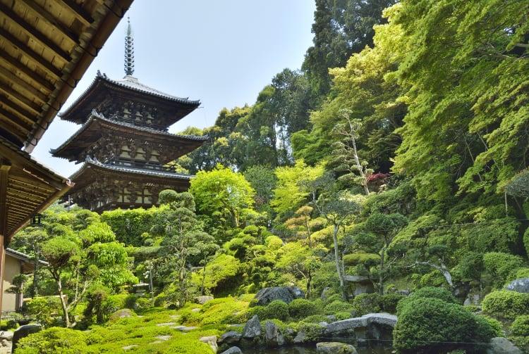 Taima-dera Temple