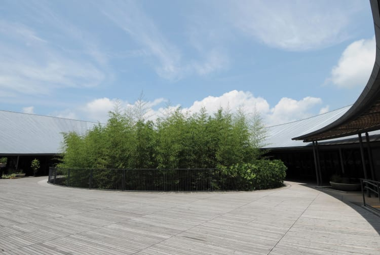 The Kochi Prefectural Makino Botanical Garden