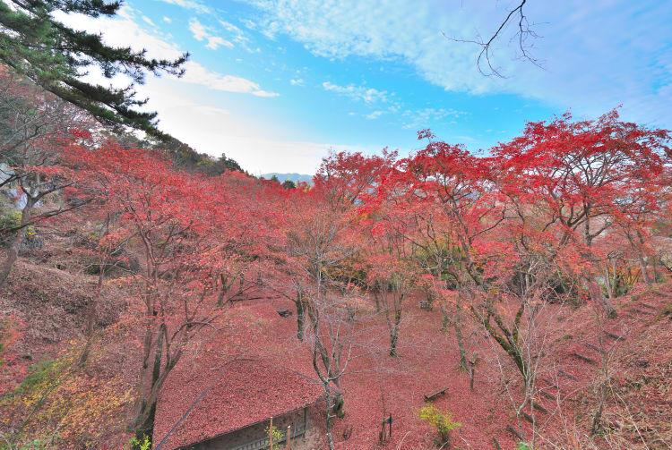 Kasagiyama Natural Park