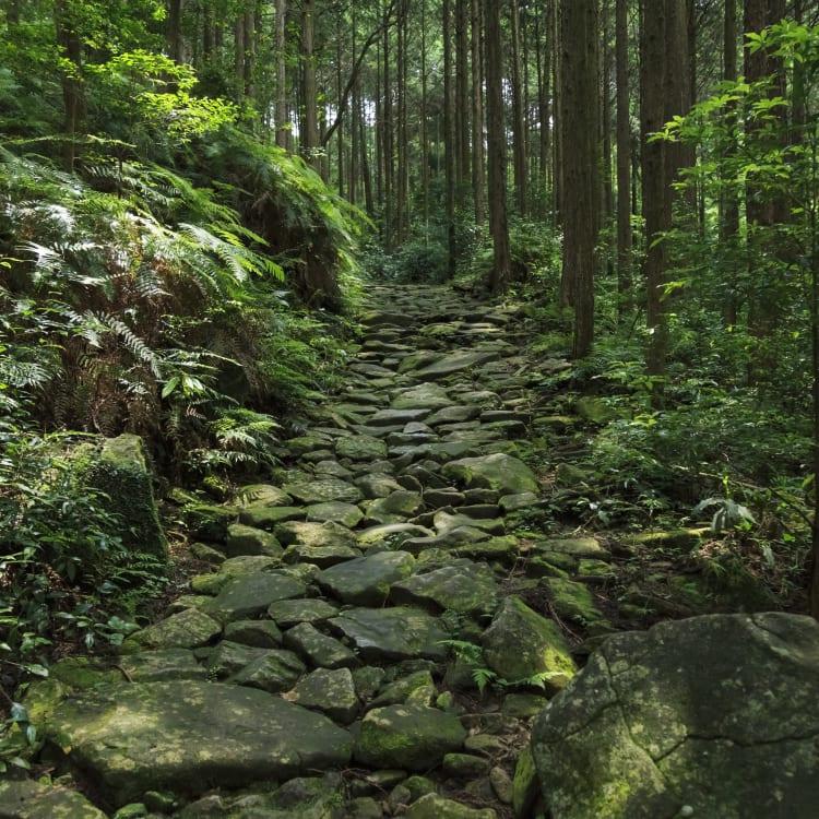 Magose-toge Pass of Kumano Kodo