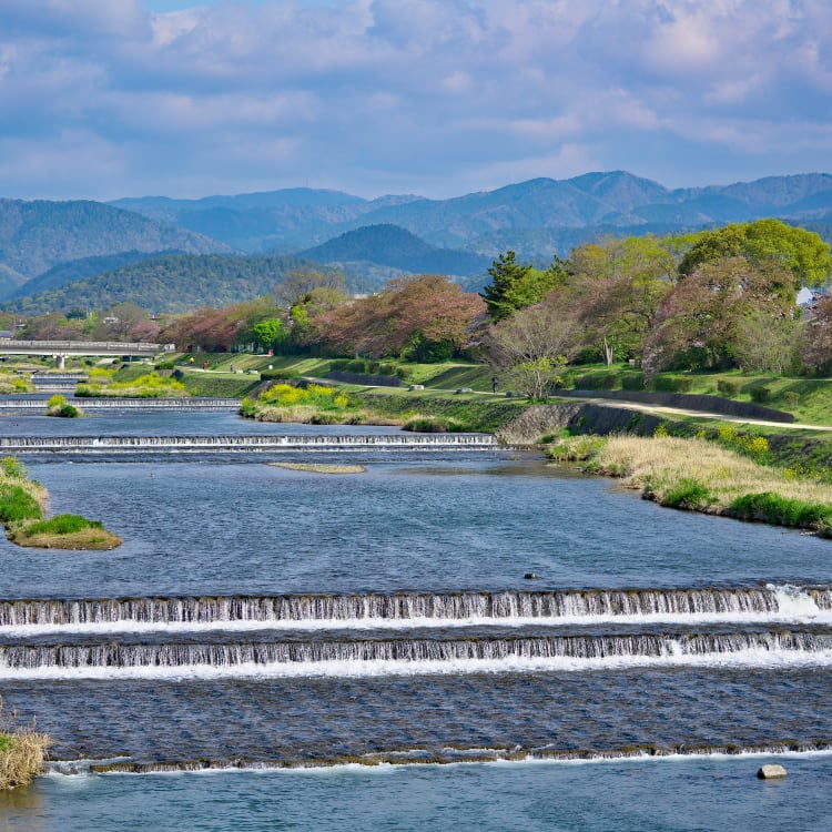 Kamo River