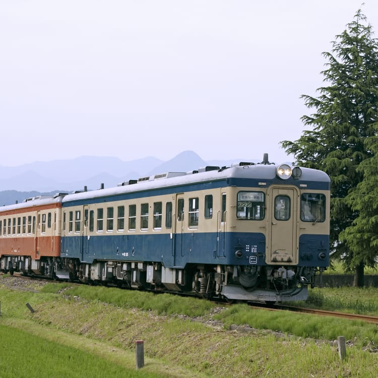 Other Lozal Railways