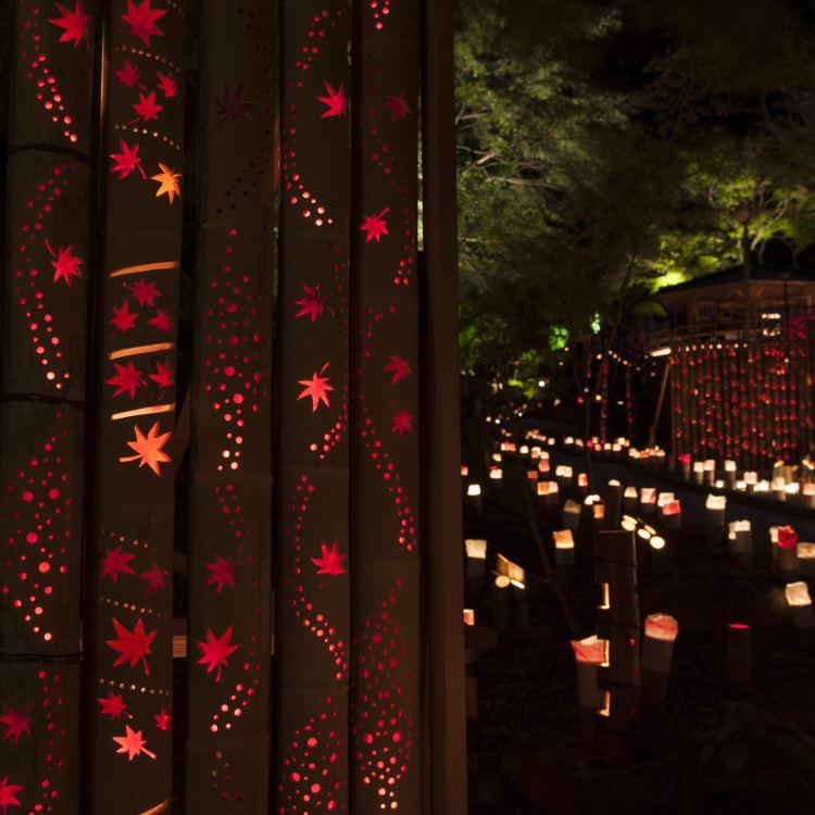 Kiyomizu Bamboo Lantern Festival