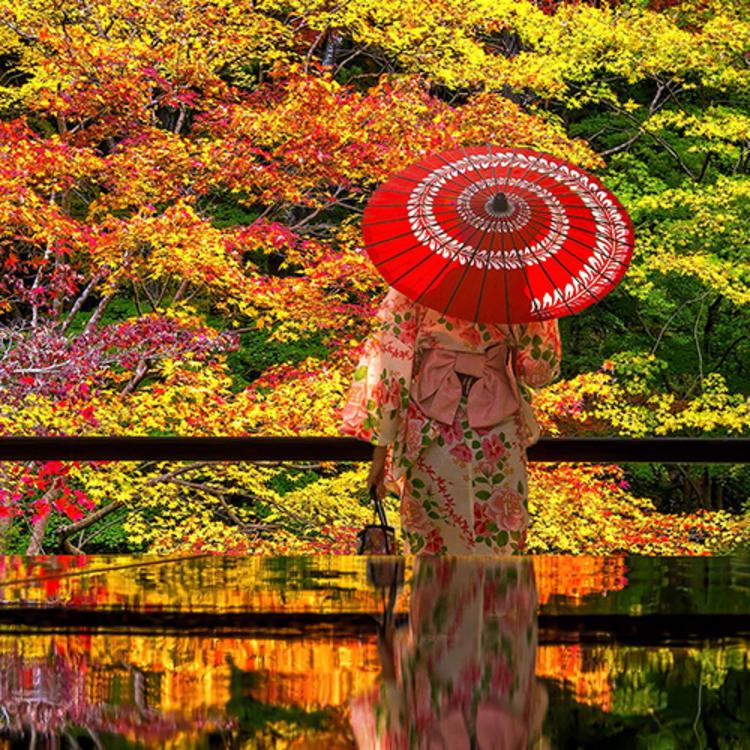 Luxury Japan