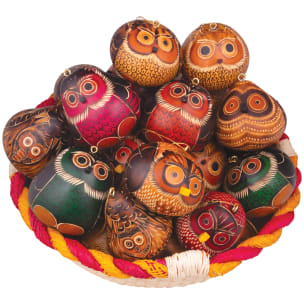 CRG115N Owls Mix