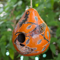 CGH152M Birds of North America - Birdhouse
