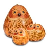Blond Owl - Large
