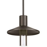Ash 12 Outdoor Pendant Dome Bronze 2700K 90 CRI  2700K High Output