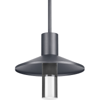Ash 12 Outdoor Pendant Dome Charcoal 3000K 90 CRI 3000K High Output