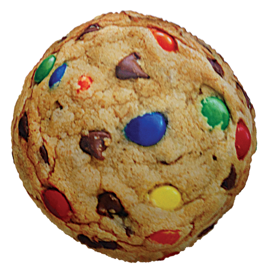 Picture of Candy Chip Cookie Scented Microbead Pillow