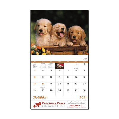Picture of Puppies & Kittens Wall Calendar
