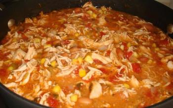 Spicy Salsa Chicken Soup