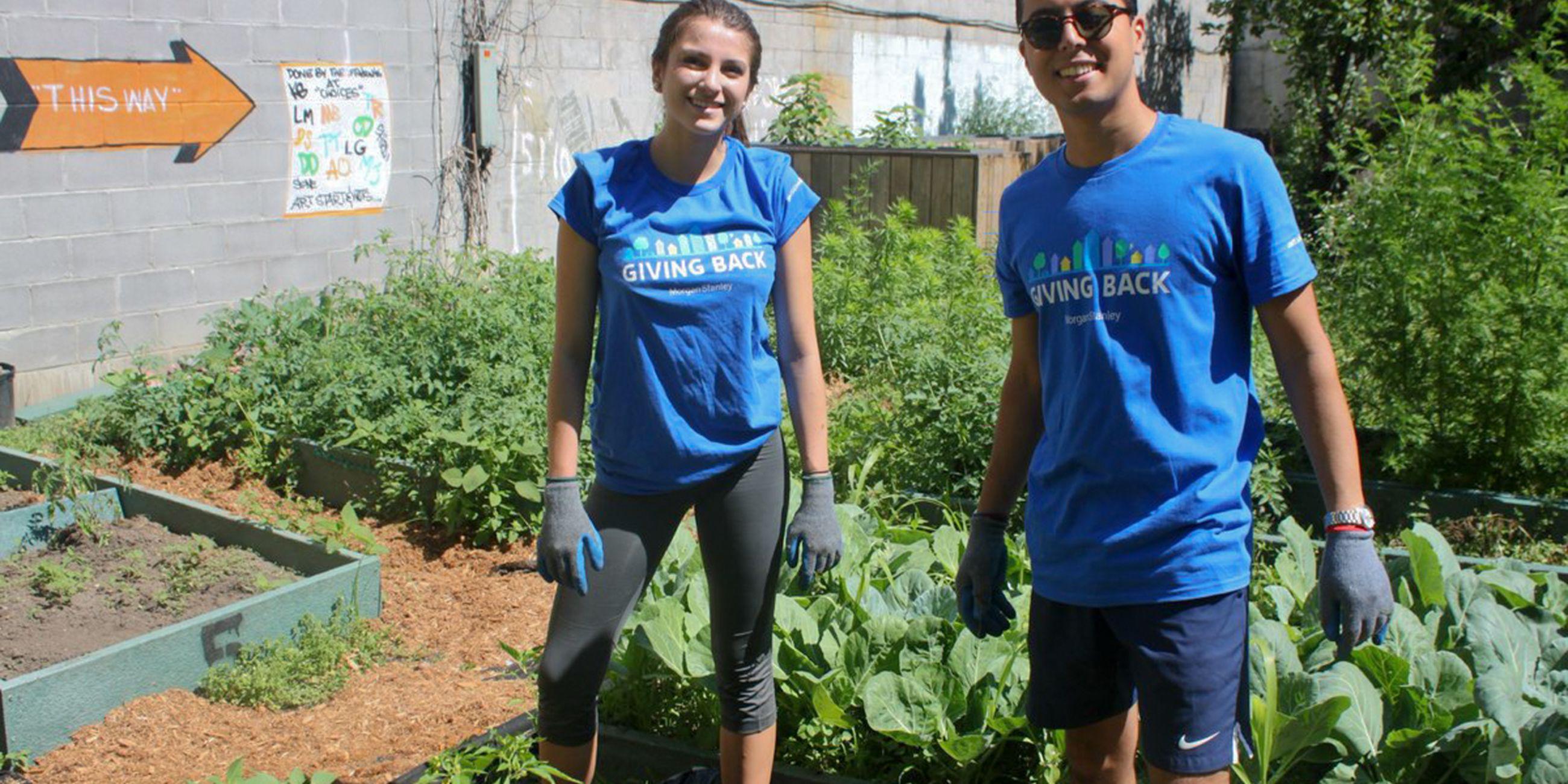 Revitalize a Community Garden in East Harlem