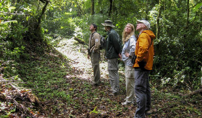 Ecobiosfera El Triunfo: Chiapas Adventure Tour: Bird-Watching Trek