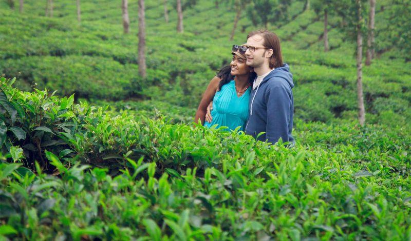 Avijatrik: Bangladesh Discovery Tour: Explore the Tea Gardens of Sreemangal