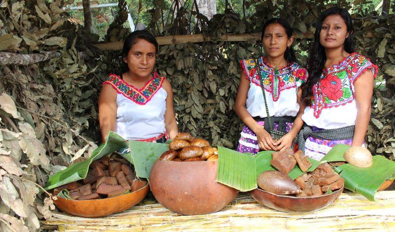 CADEM A.C.: Cuetzalan Community Tour: Empowering Local Indigenous Women