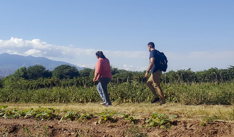 Mater Sustentable: Salta Farming Experience: Culture and Cuisine with a Local Family