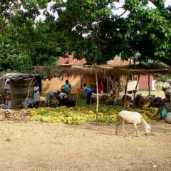 Togo village