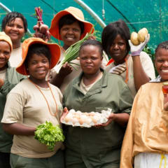 Cape Town community projects