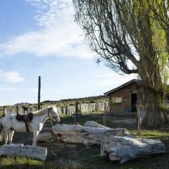 Argentina homestay