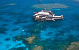 RedBalloon Outer Barrier Reef Cruise, Snorkel and Lunch - Family