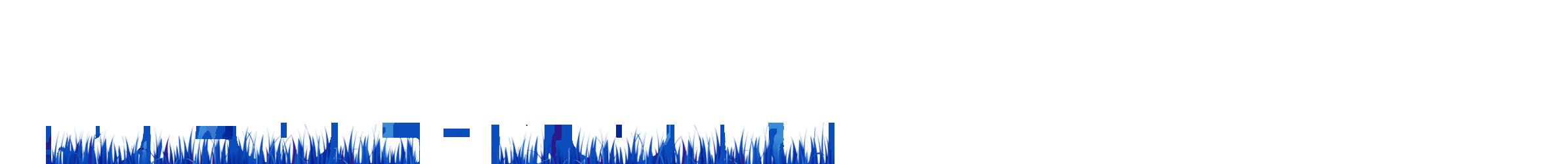 Blue-Turf.com