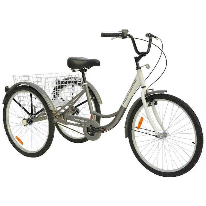 Royal London Adult Tricycle 3 Wheeled Trike Bicycle with Wire Shopping Basket - Silver