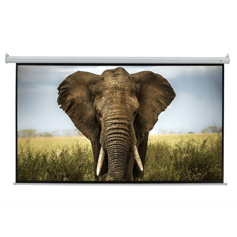 """Homegear 110"""" HD Motorized 16:9 Projector Screen #1"""