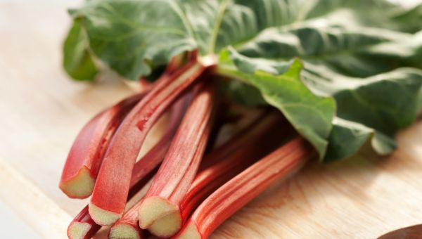 Week 38 – Baby's Size: The Length of Rhubarb