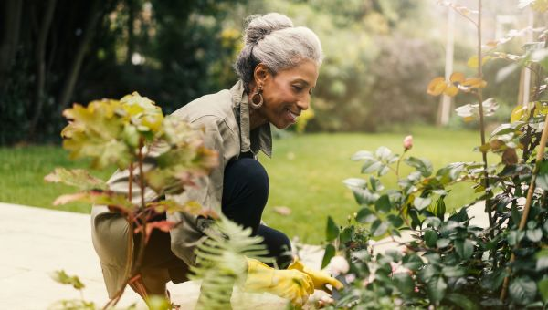 Gardening and Yard Work