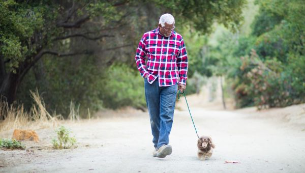 Make walking your dog a workout