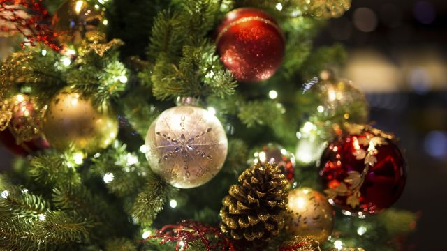 Busy Woman's Guide: 5 Holiday Health Fails