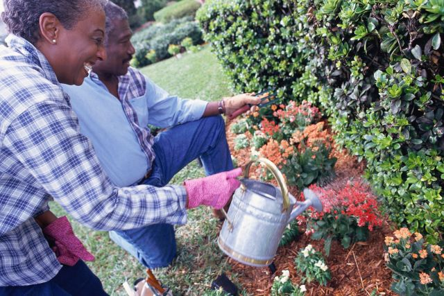 Garden Your Way to A Healthy Heart