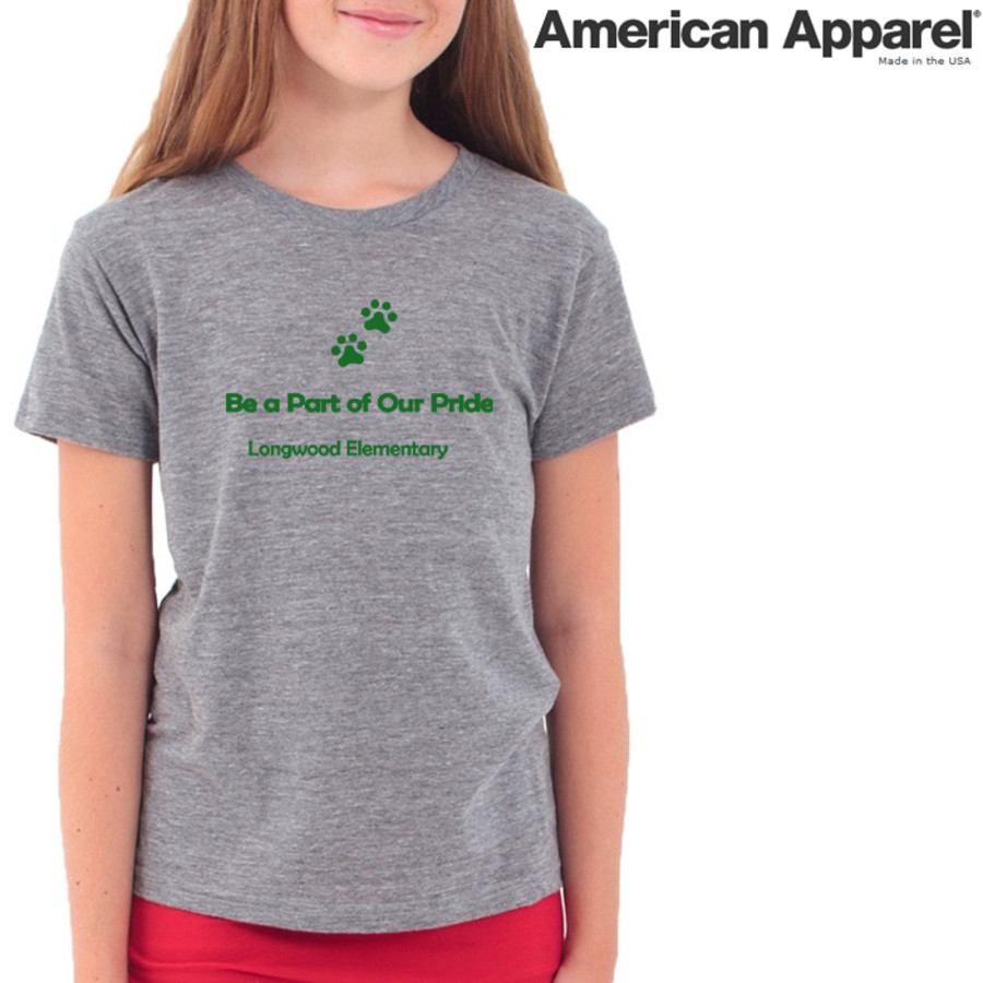 American Apparel TR201 / Tri-Blend Youth Tee