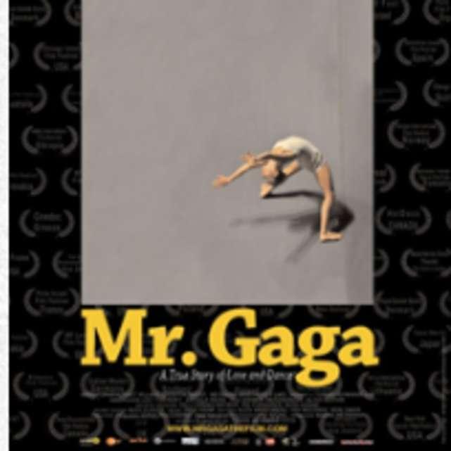 Mr. Gaga (2016)