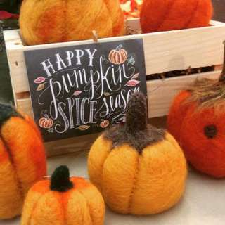 Craft Demonstration: Needle-Felting Fall Pumpkins