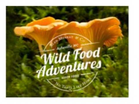 A Wild Food Foraging Adventure