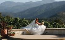 Holman Ranch Wedding