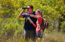 Carolina Beach State Park Birding Trail