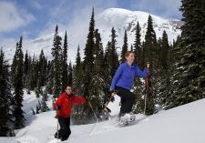 Snowshoe Mount Rainier