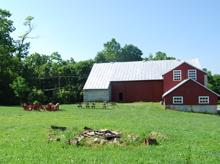 Dickinson Farm-220